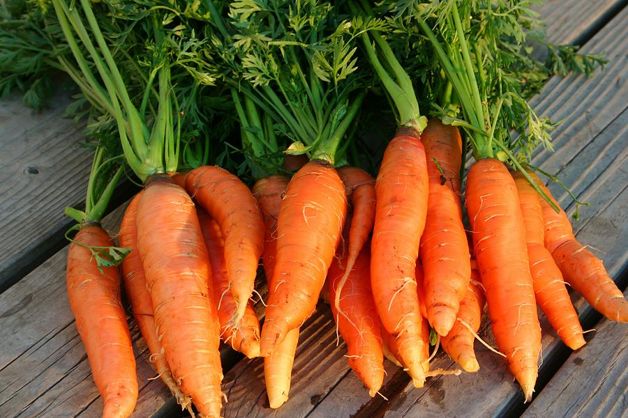 Carrots-Nantes1