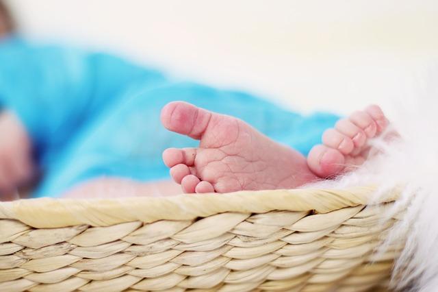 feet-619534_640